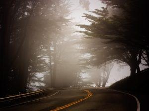 Foggy Roadway