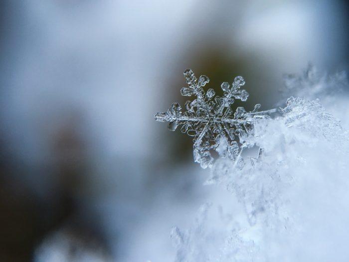 Snowflake frozen