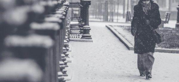 Blizzard Winter Storm